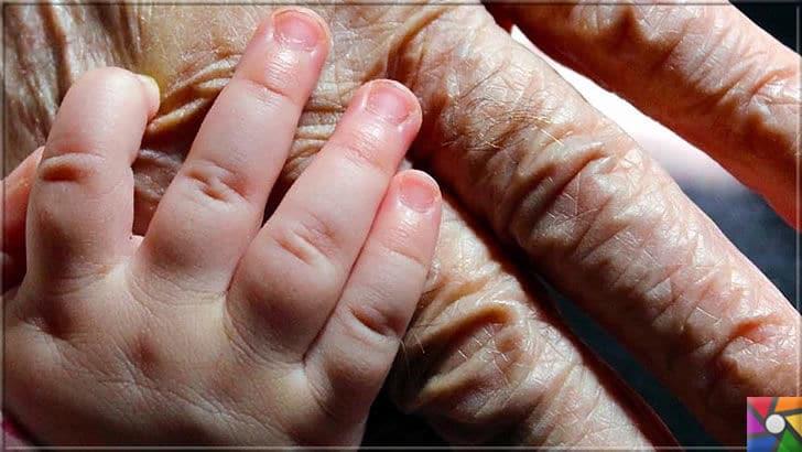 Yaşlanmayı önlemek ve ömrü uzatmak mümkün mü? Bilim ne diyor? | Yaşlıların artması nüfus oranının artışına etki etmez