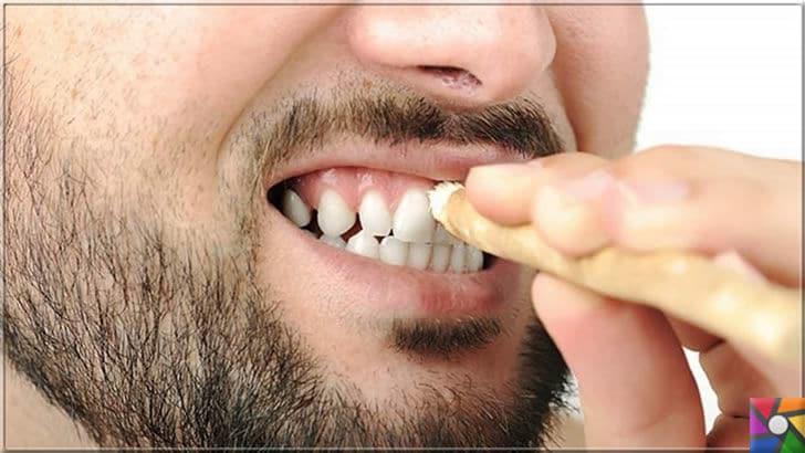 Ağız ve Diş sağlığı için misvak kullanmanın 8 bilimsel nedeni | Sağlıklı dişler için ek olarak misvak kullanın