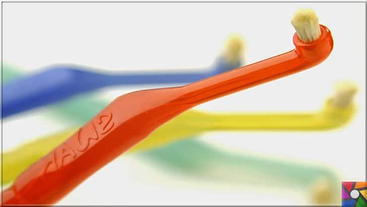 Ağız ve Diş sağlığı için misvak kullanmanın 8 bilimsel nedeni | Diş fırçası gibi misvak fırçaları üretildi