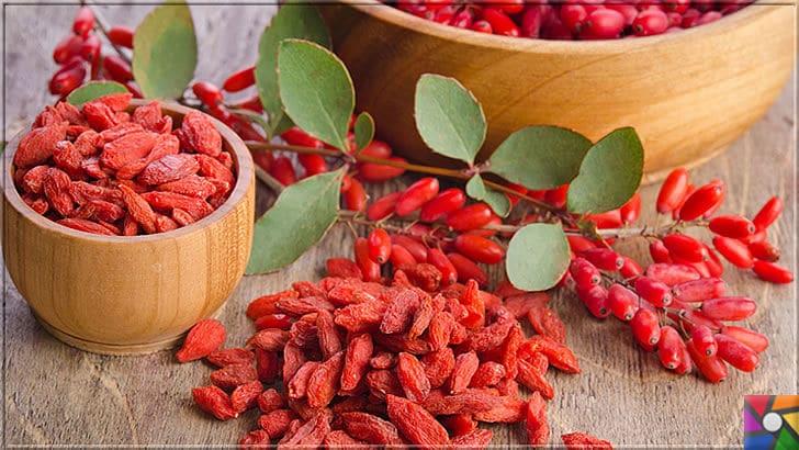 Doğal Detoks nasıl yapılır? Metabolizmayı hızlandıran en iyi 24 süper gıda | Goji Berry kurusu ve tazesi