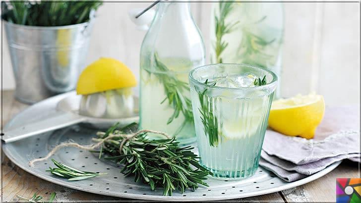 Hafıza ve zekayı geliştiren süper gıda Biberiyenin faydaları nelerdir? | Biberiye (Rosemary) ve limon ile buzlu su yaparak, metabolizmayı hızlandırabilirsiniz