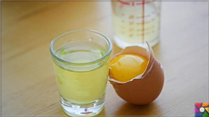 Hindistan Cevizi sütü nasıl yapılır? Hindistan Cevizi sütü ile 9 saç kürü | Protein ve A Vitamini deposu Yumurta akı