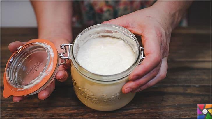 Hindistan Cevizi sütü nasıl yapılır? Hindistan Cevizi sütü ile 9 saç kürü | Saç ve cilt bakımı için evde doğal yoğurt yapın