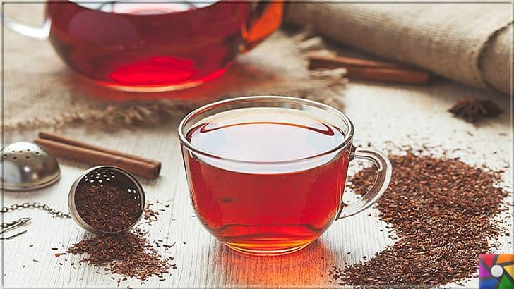 Rooibos Çayı zayıflatır mı? Rooibos Çayının yararları ve zararları nelerdir? | Doğal tatlı olan Rooibos çayında güçlü antioksidanlar var