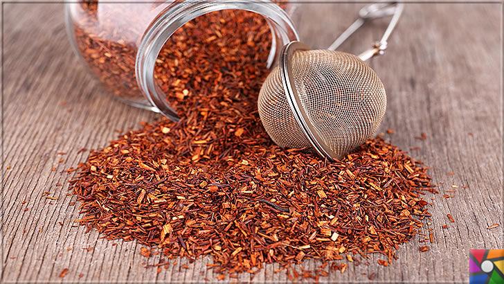 Rooibos Çayı zayıflatır mı? Rooibos Çayının yararları ve zararları nelerdir? | Rooibos Çayının fermente edilerek yapılan kurusu