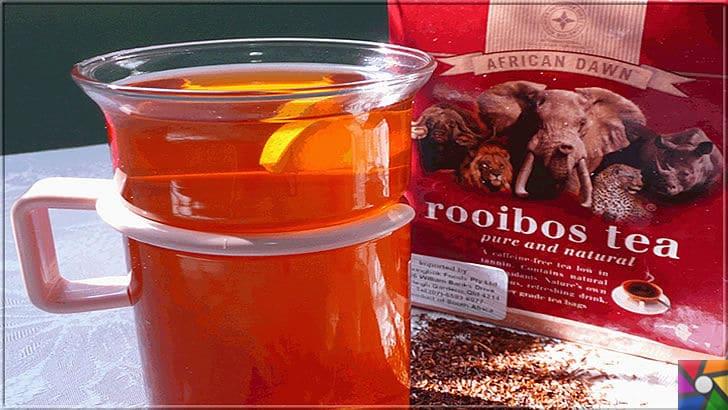 Rooibos Çayı zayıflatır mı? Rooibos Çayının yararları ve zararları nelerdir? | Hazır paketler halinde, kuru Rooibos Çayı alabilirsiniz