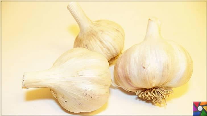 Sağlıklı bir Karaciğer için tüketilmesi gereken en iyi 21 gıda | Mucizevi sarımsak karaciğeri korur