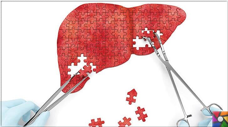 Sağlıklı bir Karaciğer için tüketilmesi gereken en iyi 21 gıda | Karaciğer kendini yenileyebilen bir organdır