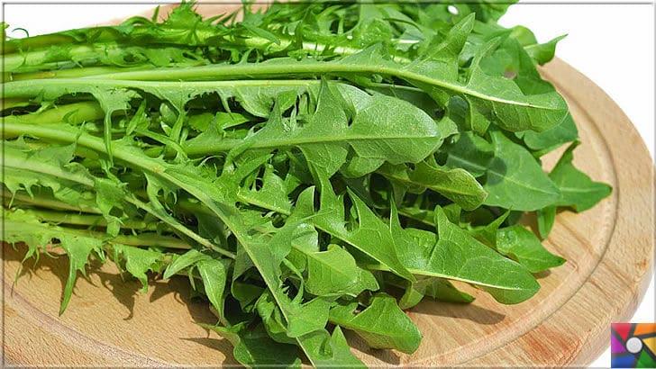 Sağlıklı bir Karaciğer için tüketilmesi gereken en iyi 21 gıda | Roka yeşil yapraklı sebzeler içinde olup, güçlü antioksidanlar içermektedir.