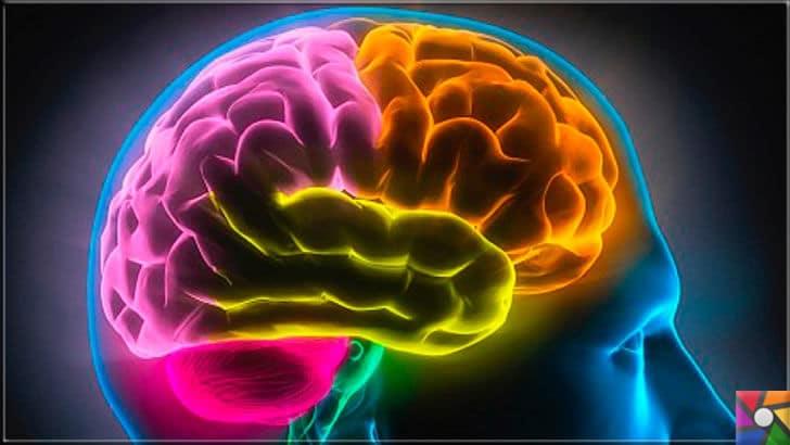 Aşırı hatırlama hastalığı Hipertimezi nedir? Nasıl anlaşılır? | Beyin hala sırrı çözülemeyen merkezi bir organ