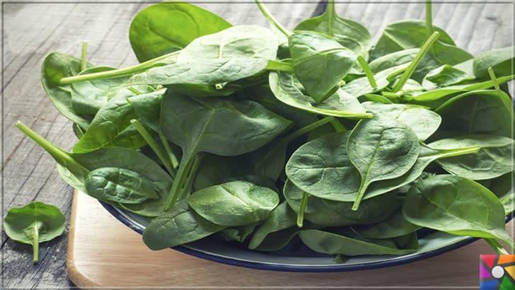 B5 Vitamini (Pantotenik Asit) Nedir? B5 Vitamini nelerde bulunur? | B Vitaminleri için semiz otunu çiğ olarak salatalara yada yoğurda karıştırarak tüketiniz.