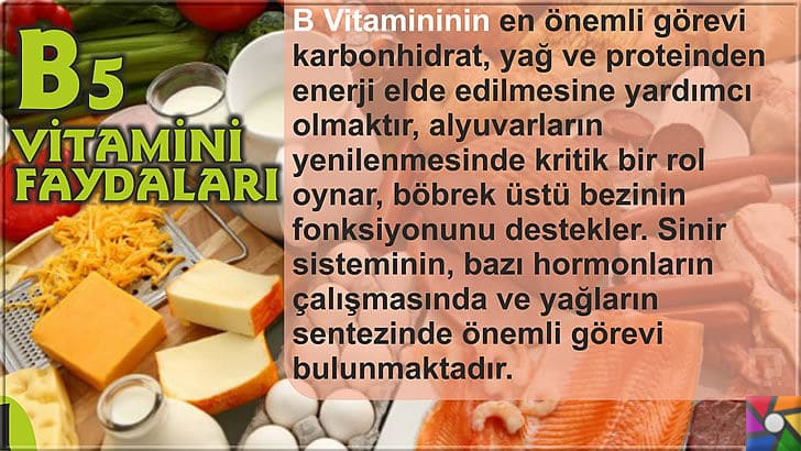 B5 Vitamini (Pantotenik Asit) Nedir? B5 Vitamini nelerde bulunur? | B5 Vitamini Faydaları