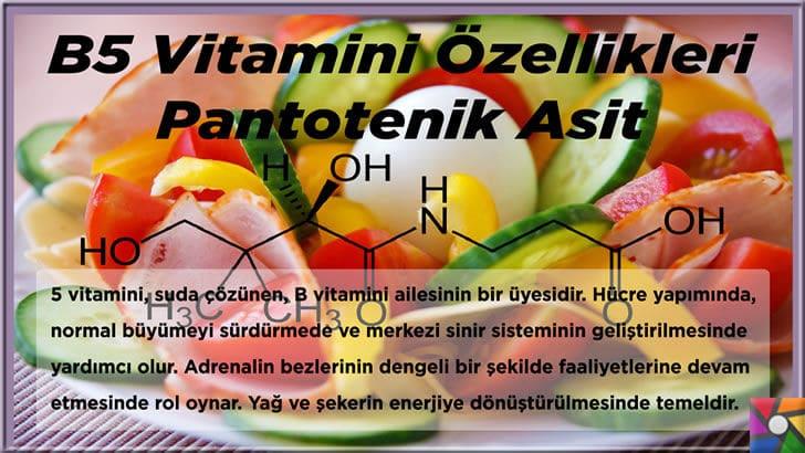 B5 Vitamini (Pantotenik Asit) Nedir? B5 Vitamini nelerde bulunur? | B5 Vitamini Özellikleri
