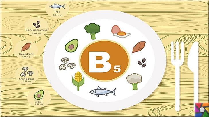 B5 Vitamini (Pantotenik Asit) Nedir? B5 Vitamini nelerde bulunur? | B5 Vitamini günlük alınan tüm doğal besinlerde bulunur