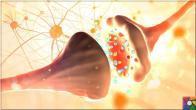Serotonin nedir? Serotonini arttırmak için en iyi 10 doğal kaynak nedir?