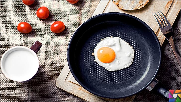 Serotonin nedir? Serotonini arttırmak için en iyi 10 doğal kaynak nedir? | Yumurta çok iyi bir protein kaynağı olup, Serotonin üretimini arttırmada etkilidir.