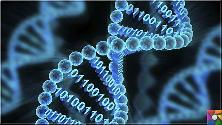 Yapay Zeka Nedir? Yapay Zeka Kullanılan Alanlar Nelerdir? | Yapay zeka ile yapay bir DNA sistemi yapılıyor