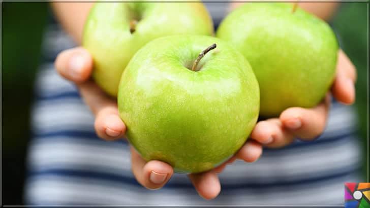 Neden elma yemeliyiz? Elmanın faydaları ve zararları nelerdir? | Günde 2 elma sağlık için çok yararlı