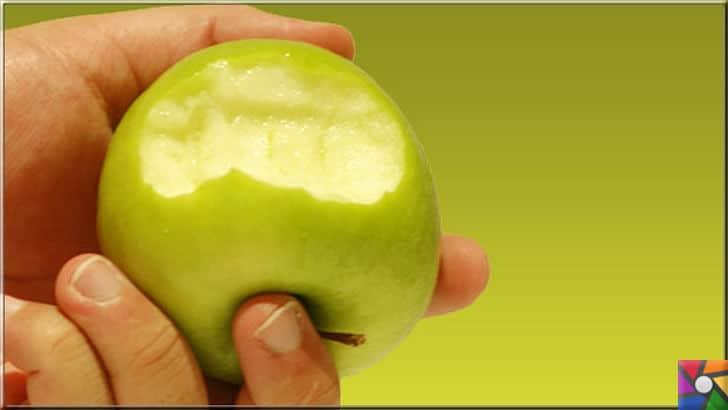 Elmanın Faydaları ve Zararları