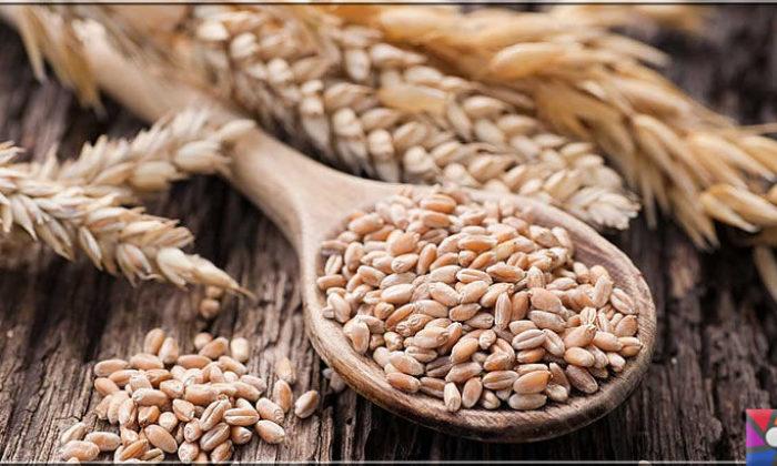 Neden buğday yemeliyiz? Buğdayın sağlık açısından bilinmeyen yönleri