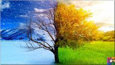 Bahar yorgunluğu nedir? Bahar yorgunluğunu kolay atlatmak için 9 öneri