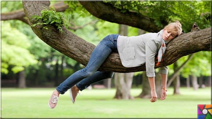 Bahar yorgunluğu nedir? Bahar yorgunluğunu kolay atlatmak için 9 öneri | Bahar geldiğinde bazı kişilerde yorgunluk ve devamlı uyku hali görülebilir