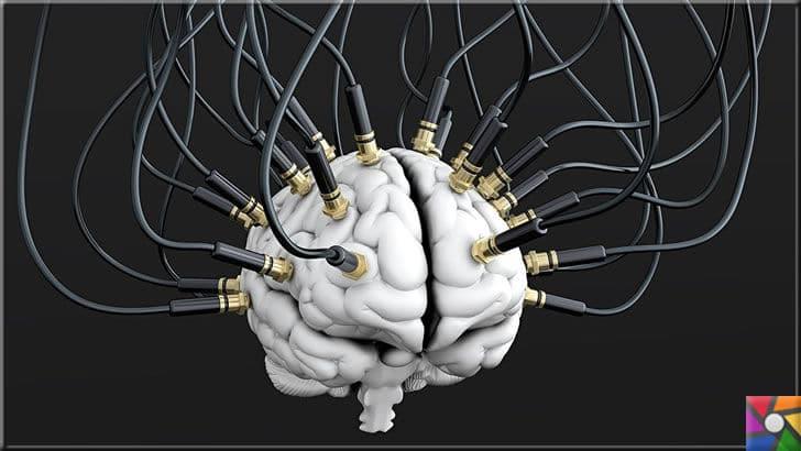 Dijital deneyimler nereye varacak? Dönüşümlerin geleceği nasıl olacak? | Dijital deneyimler beyni geleceğe adapte ediyor