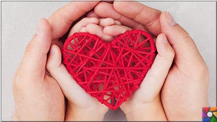 Kalp naklinin yerine alabilen Kalp yaması nedir? Kalp yaması nasıl çalışır? | Kalp diğer organlara nispeten kendi hücrelerini yenilemede çok zayıf