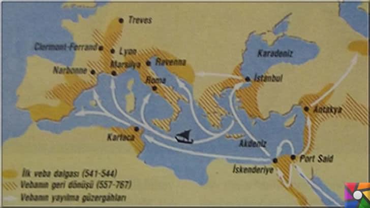 Tarihimizde toplu ölümlere neden olan salgın hastalıklar hangileridir? | Kolera hastalığın İstanbul'a gelip, hem Avrupa'ya hemde Anadolu'ya yayıldığını tarihsel kaynaklar söyleniyor