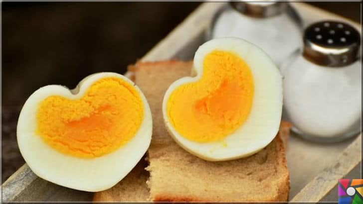Yumurtanın üzerindeki kodlar ne işe yarar? Yumurtanın iyisi nasıl anlaşılır? | Yumurta sarısının rengi onun daha kaliteli olduğunu göstermez