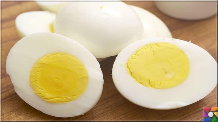 Yumurtanın üzerindeki kodlar ne işe yarar? Yumurtanın iyisi nasıl anlaşılır? | Yumurta haşlandığında sarısının etrafında yeşil halkalar var ise bu onun bayatlaştığını gösterir
