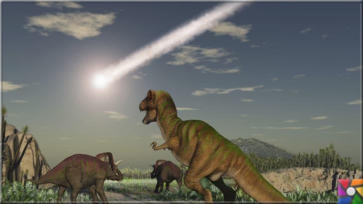 Dünyanın sonu mu geliyor? Durdurulamaz 6 kitlesel yok oluş | Dinazorların gökten yağan astreoidlerle direkt yok olmadı. Düşen göktaşlarının oluşturduğu gaz bulutu güneşin dünya ile ilşkisini kesti ve yaşam durdu