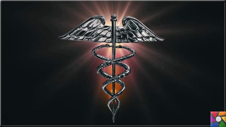 Tarihte ilk hekim yada doktor kimdi? Geçmişten günümüze Tıp Tarihi | Kanatlı bir asanın üzerine sarmal biçiminde sarılan iki yılanla tasvir edilen Tıp sembolü yani kadüsenin (Caduceus) sağlık tanrısıAsklepios'un simgesi