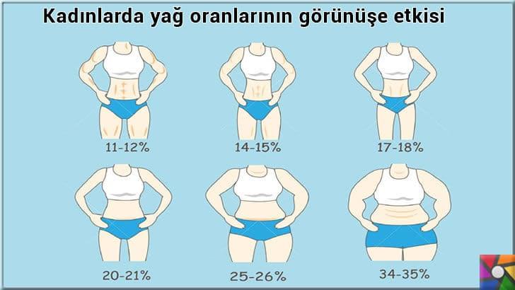 Sporculara neden yağ gerekli? İdeal vücudun yağ oranı nedir? | Kadınlarda vücut yağ oranlarının görüntüsü