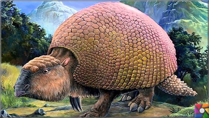 200 yıl sonra nesli tükenmeyen tek iri hayvan inek olacak! | Soyu tükenmiş hayvanlar listesindeki Gliptodon'un resmi