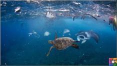 Çevre düşmanı Plastik sektörünün dolu dizgin yükselişi devam ediyor!