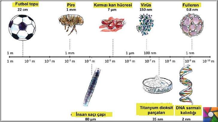 Nano atık nedir? Nanoteknoloji atıkları insana zararlı mı? Nasıl korunmalı? | Nano boyutları en iyi anlatan grafik