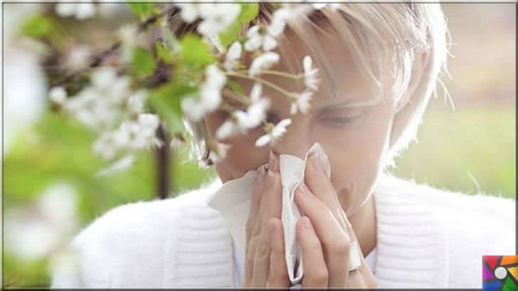 Saman nezlesi (Bahar nezlesi) nedir? Bahar alerjisi ve Alerjik rinit nedir? | Bahar alerjisi bir bağışıklık sistemi sorunu olduğu için sağlıklı ve dengeli beslenmeye geçilmesi gerekir