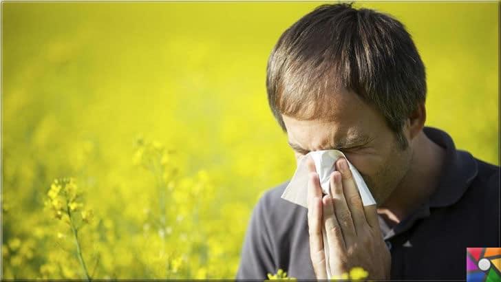 Saman nezlesi (Bahar nezlesi) nedir? Bahar alerjisi ve Alerjik rinit nedir? | Bahar alerjisi ağır geçecek kadar zorluyorsa mutlaka doktora gidiniz