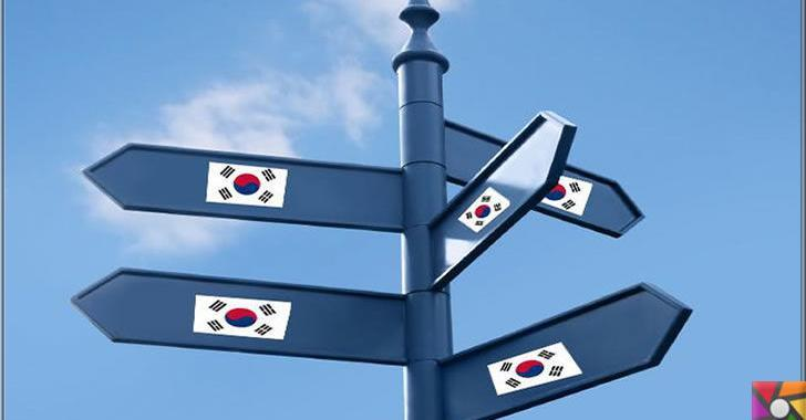 Güney Kore'nin ekonomisi nasıl kalkındı? Örnek bir sanayi devrimi