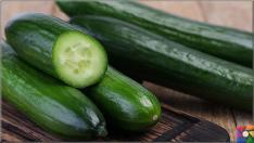 Salatalığın insan sağlığı üzerinde bilinmeyen 8 müthiş faydası