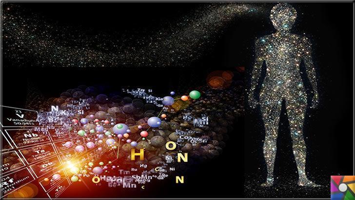 İnsan vücudunda hangi elementler var? Elementler yararlı mı zararlı mı?