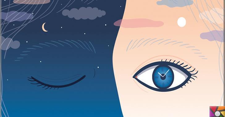 Biyolojik saat nedir? Vücut saati nedir? Biyolojik saat nasıl çalışır?