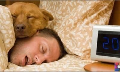 Hafta sonu uykusu faydadan çok zararlı mı?