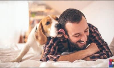 Hayvanlarda aşk hormonu var mı?