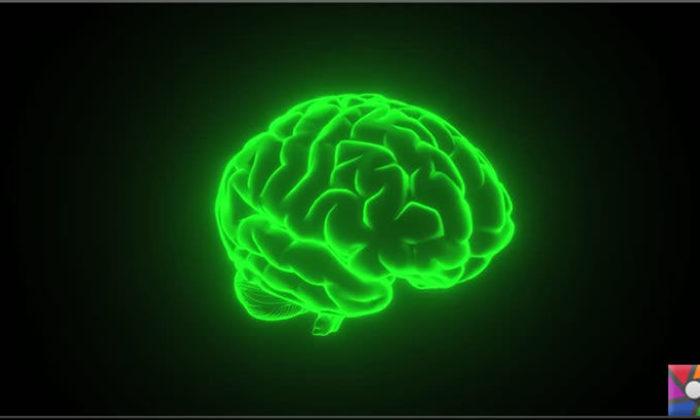 Beyin kendi kendini yenileyebilir mi?