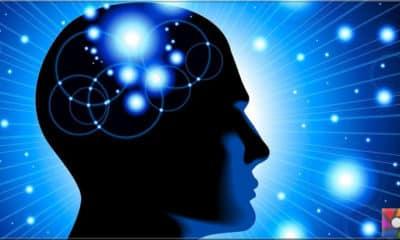 Beyni internete bağlamak mümkün mü?