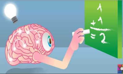 Beynimizdeki sinir hücreleri bilgileri nasıl filtreliyor?