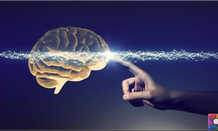Beyin ölümü ne zaman gerçekleşir?