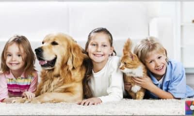 Evde hayvan beslemek hayvan haklarına ters mi?